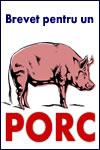 brevet pentru un porc