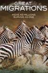 Marile migraţii ale animalelor